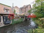 比利时的房产,编号36243934