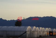 美国加州Desert Center的,编号37080854
