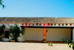 西班牙的商业地产,Sevilla,编号41216903