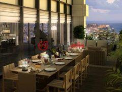以色列特拉维夫4卧3卫的房产