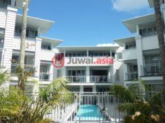 新西兰派希亚1卧1卫的房产