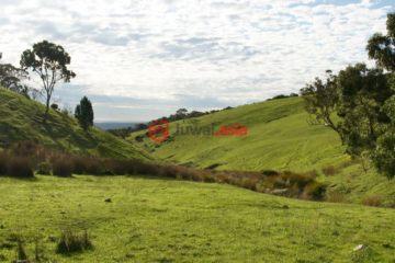 居外网在售澳大利亚阿德莱德总占地981282平方米的土地