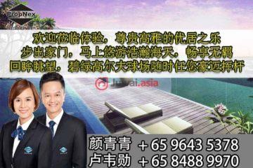 中星加坡房产房价_新加坡房产房价_居外网在售新加坡5卧4卫曾经整修过的房产总占地259平方米SGD 5,670,000