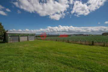新西兰房产房价_怀卡托房产房价_Pukekawa房产房价_居外网在售新西兰Pukekawa总占地40200平方米的乡郊地产
