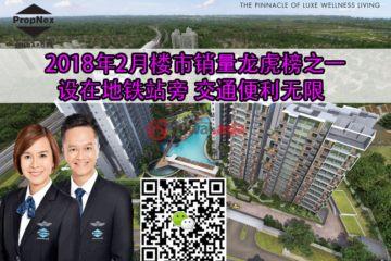 新加坡新加坡2卧2卫新开发的房产