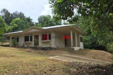 居外网在售帕劳3卧2卫原装保留的房产总占地1000平方米USD 1,500 / 月