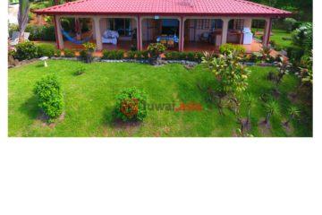 居外网在售哥斯达黎加4卧3卫原装保留的房产总占地3716平方米USD 349,000