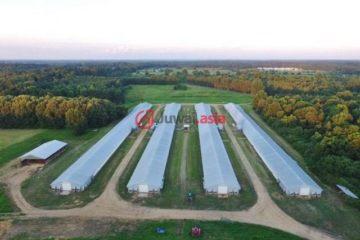 总占地161874平方米的商业地产