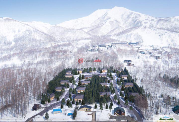日本北海道尼斯科奇哦的房产,434-5 Niseko,编号36816279