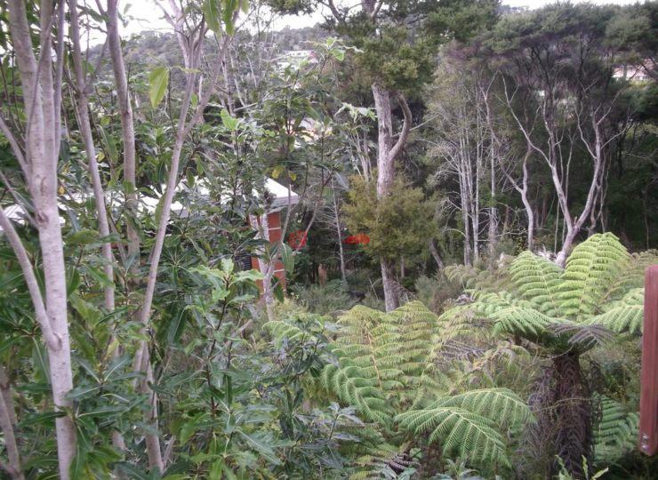 新西兰北部地区派希亚的房产,4 Island View Close,编号33767842