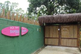 Bamboo Groove Hostel